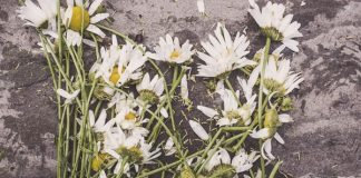 Effects of Debt and Death: What Happens When a Loved One Passes Away With Debt?